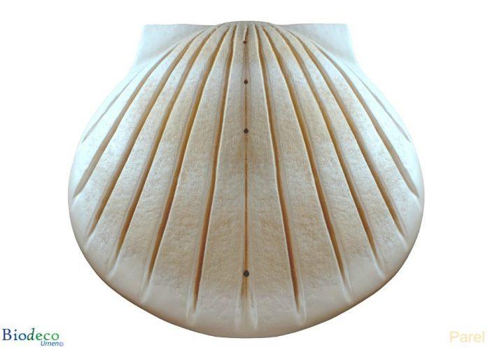 Biologisch afbreekbare zee-urn Schelp in de kleur parel, voor asbijzetting in het water.