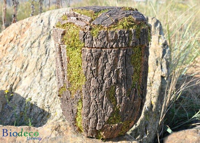 Biologisch afbreekbare Kurkeikenschors-urn, handmatig afgewerkt met de schors van de Kurkeik voor een asbijzetting in de aarde