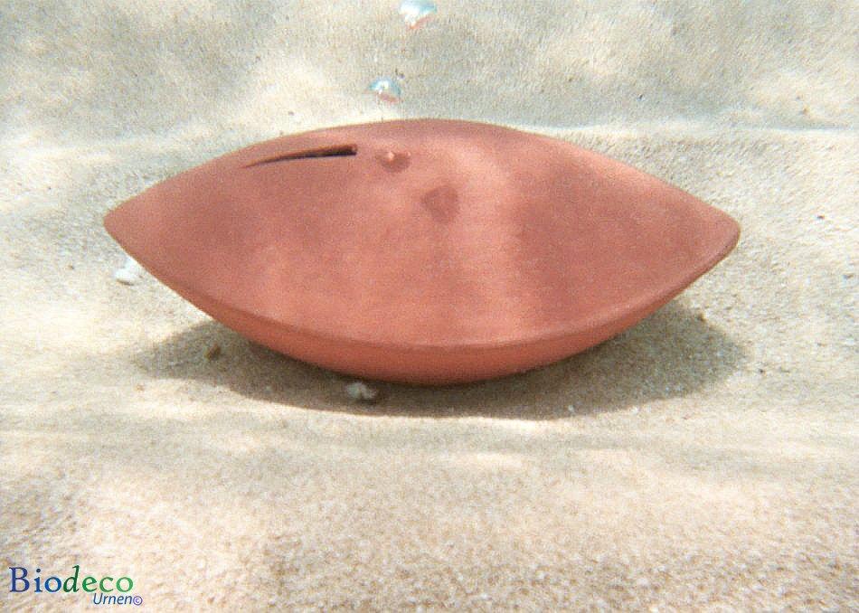De biologisch afbreekbare zee-urn Memento koraal, op de bodem van de zee na de asbijzetting in het water